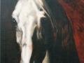 cheval-copie-800x600