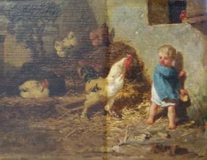 Coq [800x600]